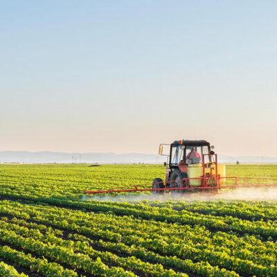 vendita-sementi-agricole-certificate-italia-piemonte-adaglio-sementi-frumento-triticale-orzo-avena-soia-leguminose-foraggio-adaglio-sementi-metodologia